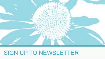 1 Newsletter